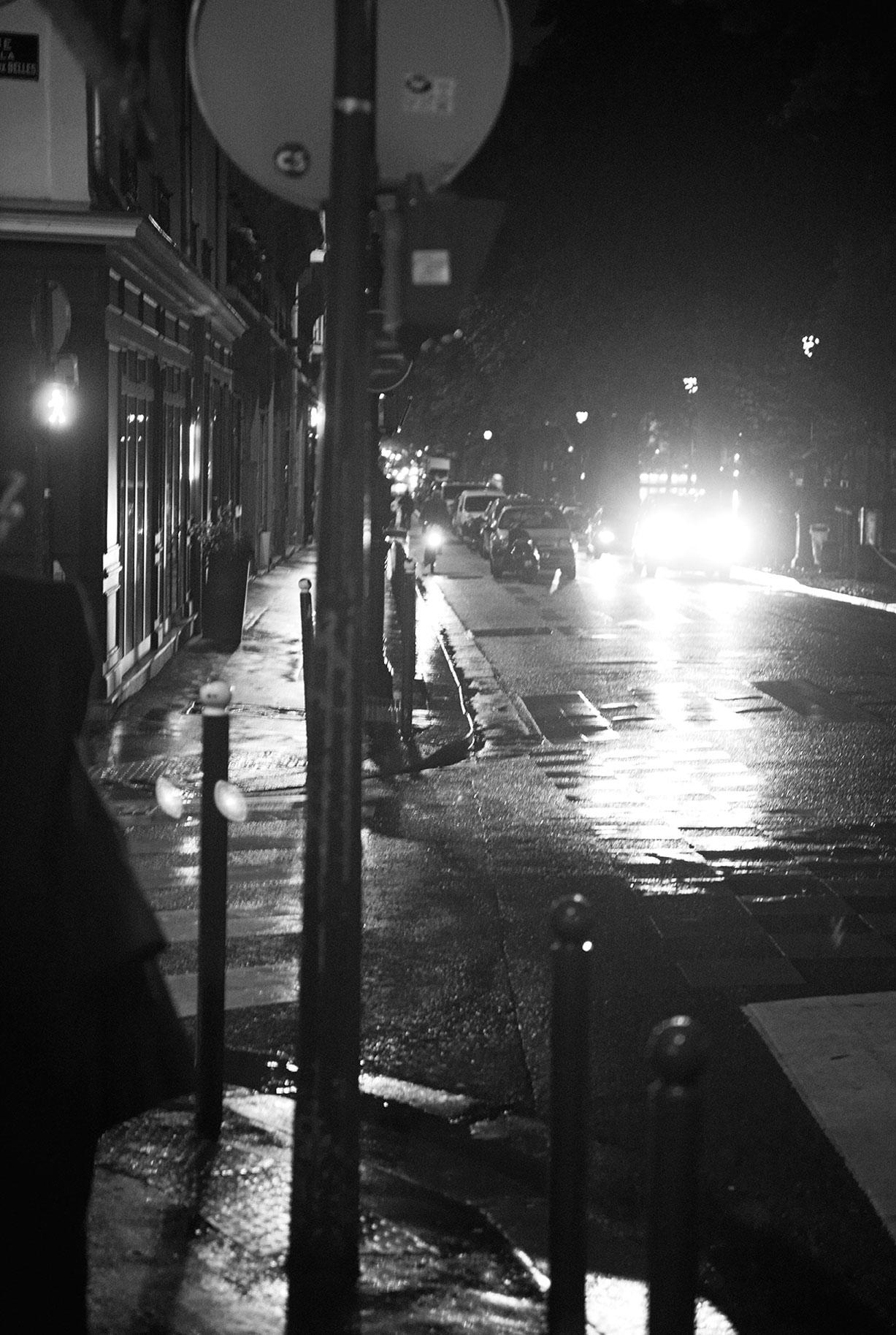 -ночная красавица- Querelle Jansen / фото 14