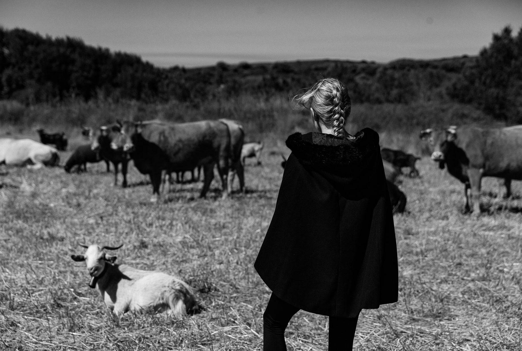 Яна на поле с пасущимися козлами и коровами / фото 06