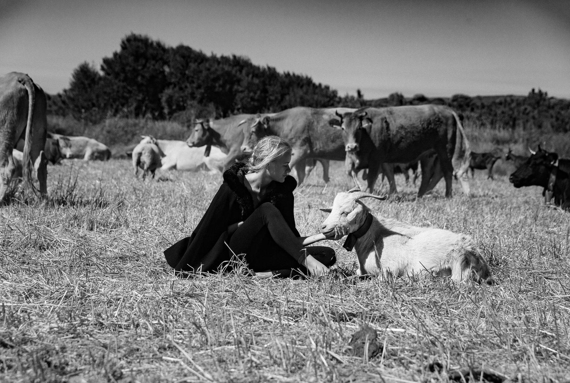 Яна на поле с пасущимися козлами и коровами / фото 07