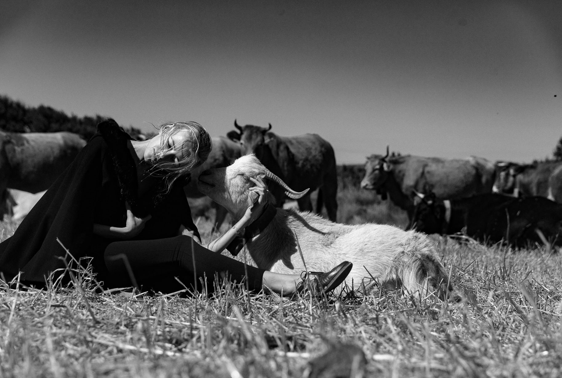 Яна на поле с пасущимися козлами и коровами / фото 08