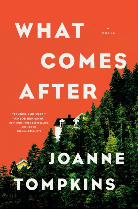 What Comes After by JoAnne Tompkins  [ENG]