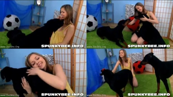 202081598 0215 fun spunky bee plays with dogs - Spunky Bee Plays With Dogs