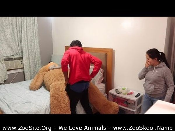 202081812 0255 fun caught having sex with giant teddy bear   prank on wife - Caught Having Sex With Giant Teddy Bear - Prank On Wife