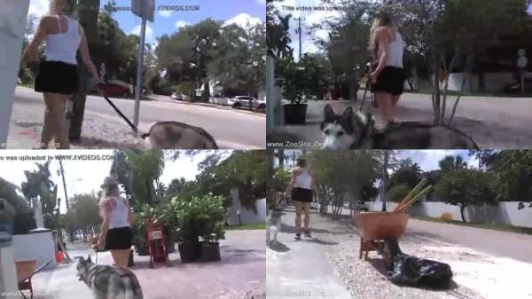 202082362 0194 fun stella type butthole dog girl anal - Stella Type Butthole, Dog-Girl Anal