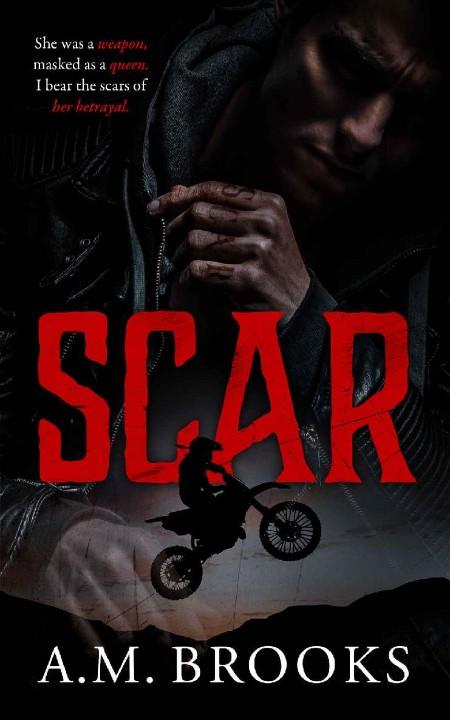 Scar by A M  Brooks